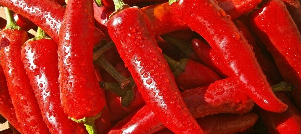 Adding pepper to nightly meals will help you lose weight while you sleep!